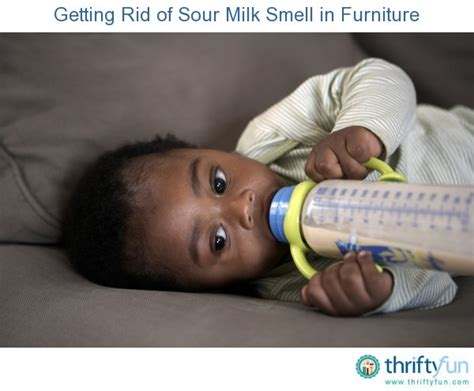 Getting Rid Of Sour Milk Smell In Furniture