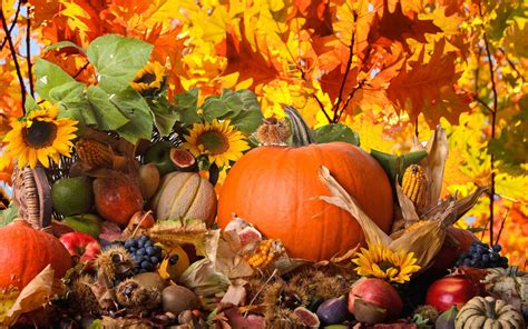 thanksgiving wallpapers backgrounds images