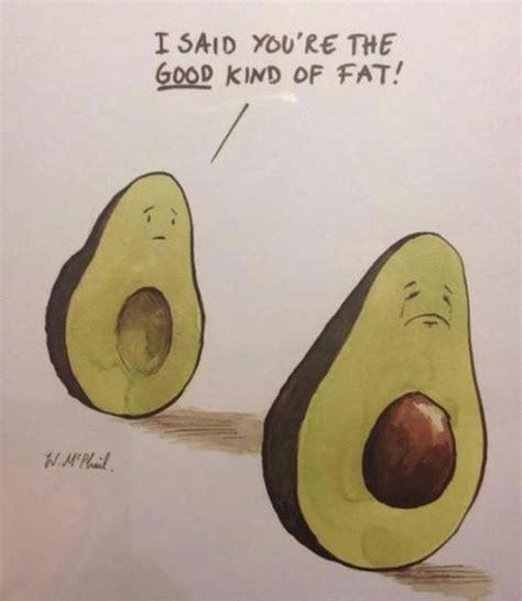 Avocado Memes - fat avocado
