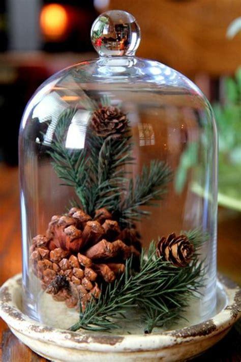 bocal cuisine la cloche en verre en 43 belles photos avec beaucoup d 39 idées