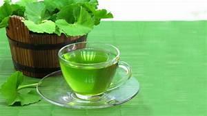 Buy Gotu Kola Tea  Benefits  How To Make  Side Effects