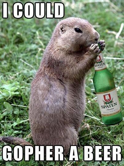 Beer O Clock Meme - i could gopher a beer funny memes