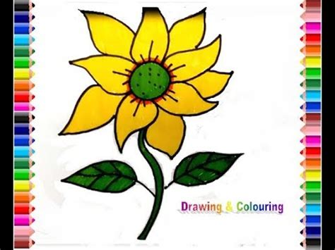 menggambar bunga matahari