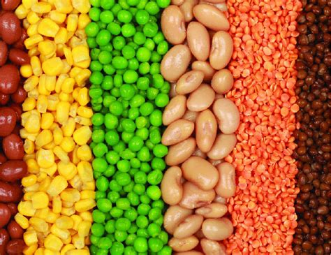 legumes cuisine legumes are a s best tweed daily