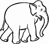 Elephant Coloring Pages Animals Wildlife sketch template