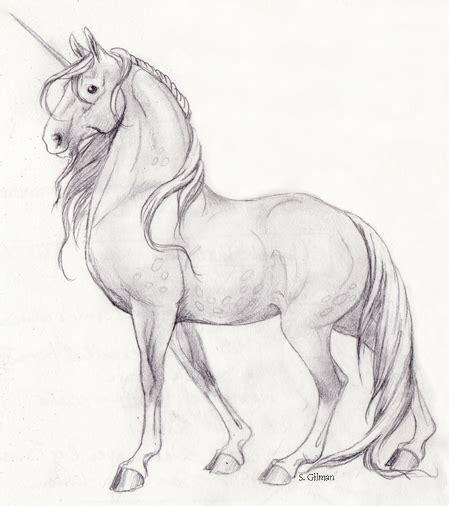 unicorn sketches unicorns pinterest