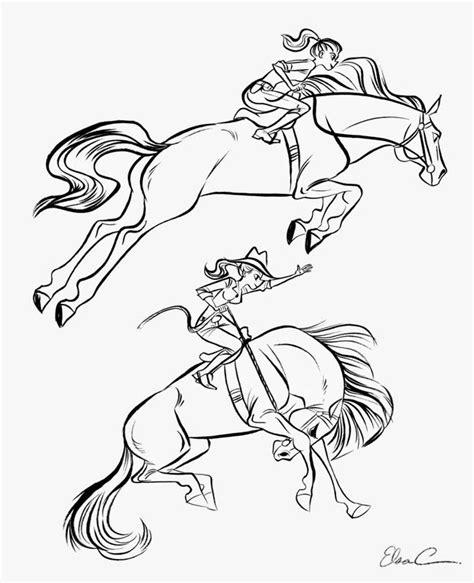 color horses competition images  pinterest