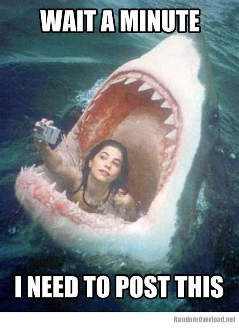 Selfie Meme Funny - funny memes about girls girl meme facebook selfie fail funny pictures jokes like really