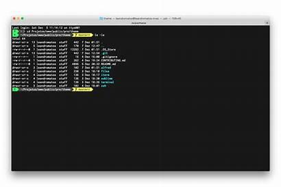 Terminal Theme Mac Zsh Iterm2 Pre Github