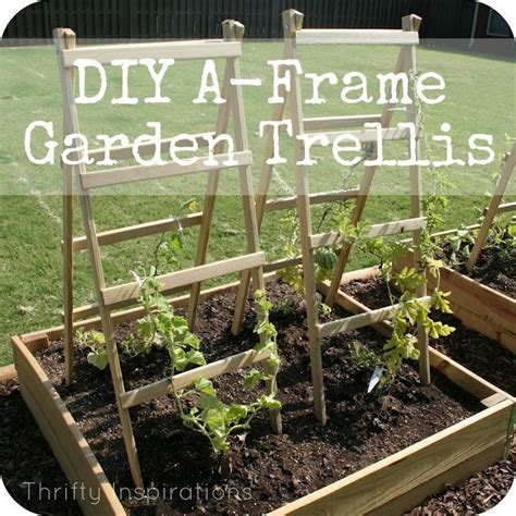 A Frame Garden Trellis by A Frame Trellis Diy Your Garden Gardening Flowers