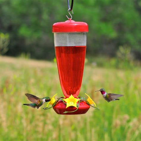 pets hummingbird feeders pet aster top fill 24 oz hummingbird feeder