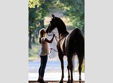 1000+ Horse Love Quotes on Pinterest Dream Barn, Horses