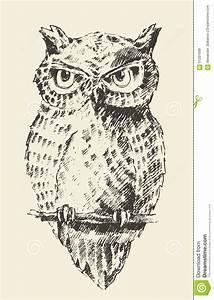 Owl Vintage Illustration Retro Hand Drawn Sketch Stock ...