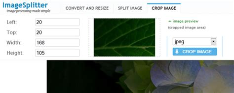 Free Form Crop Image Online by Useful Free Apps To Resize Images Online Theapptimes