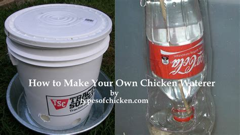 how to make your own water how to make your own chicken waterer 2 diy projects types of chicken