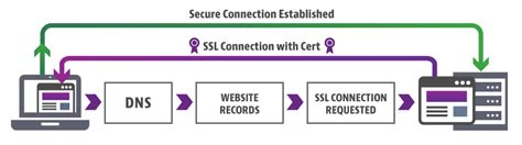 Ssl Certificates Explained 7 Misconceptions About Ssl. List Of Online College Courses. Schools That Offer Lvn Programs. Abington Memorial Hospital Dixon School Of Nursing. Los Angeles Tap Water Quality. Smart Lipo Breast Reduction Ford Cobra New. Discount Padded Envelopes Plumber Culver City. Indiana Bloomington Application. Graduate Programs In Interior Design