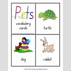 Pets Vocabulary Flash Cards Word Wall X 31  8 Pages By Clever Classroom