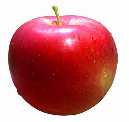 Apple Fruit Transparent Fresh Apples Mele Manzana
