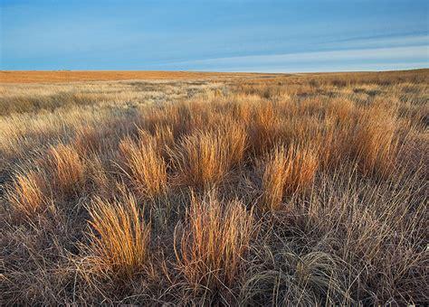 Kansas Winter Prairie : Western Kansas : Fine Landscape ...