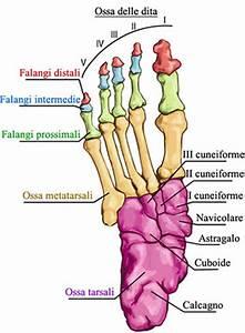 Indice sintomi a