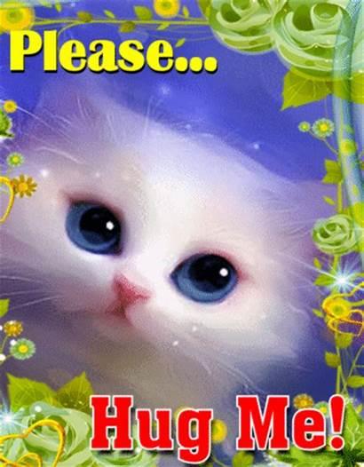 Hugs Kitty Needs Hug Month Card Greetings