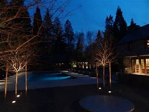 residential landscape pool and tree lighting sestak With residential outdoor lighting austin