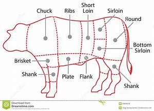 Cut Of Beef Set  Poster Butcher Diagram And Scheme