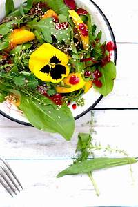 Salat Selber Anbauen : sommersalat mit mango selber machen rezept mit himbeerdressing ~ Markanthonyermac.com Haus und Dekorationen