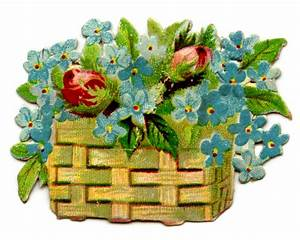 Antique, Pictures, -, Flower, Baskets, -, Doves