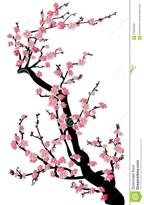 Watercolor Sakura Frame Background With Blossom Cherry