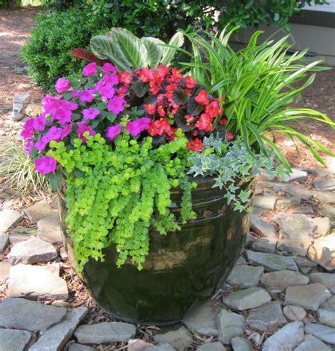 My Front Yard Container Garden  Garden Ideas Pinterest