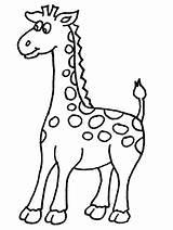 Giraffe Coloring Pages Printable Giraffes Printables Artist Animal sketch template