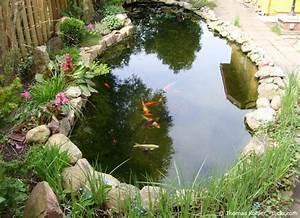 Kleine Gartenteiche Beispiele : welche fische f r den gartenteich garten hausxxl garten hausxxl ~ Whattoseeinmadrid.com Haus und Dekorationen