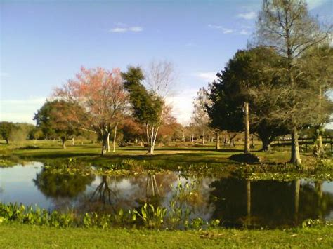 Venetian Gardens by Play Area Vp Picture Of Venetian Gardens Park Leesburg