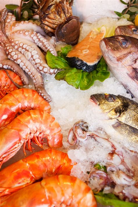 where to get fresh seafood fresh seafood free stock photo public domain pictures