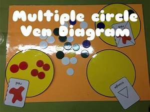 Multiple Circle Ven Diagram  Sorting  Infant Education