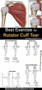 Best Exercise For Rotator Cuff Injury