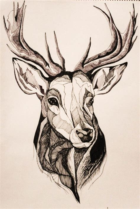 deer drawing ideas  pinterest deer paintings