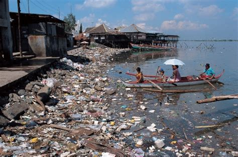 10 interesting water pollution facts my interesting facts