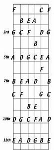 Guitar Fretboard Diagram Printable