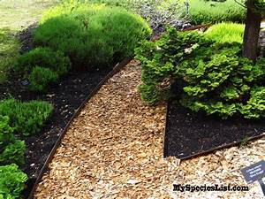 Garden Path Love Most Innovative Landscaping Edging