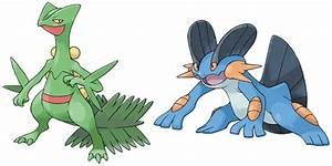 6th Gen Mega Evolution in Omega Ruby & Alpha Sapphire ...