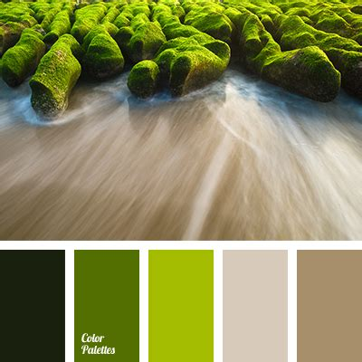 Greenbrown  Color Palette Ideas. Living Room Ceiling Design Ideas. Purple Living Room Chair. Primitive Colors For Living Room. House Living Room Design Pictures. Paint Ideas For Living Room With High Ceilings. Burgundy And Cream Living Room. Interior Design Living Room Layout. Feng Shui Mirrors In Living Room