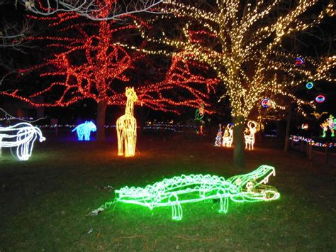 Hogle Zoo Lights by Lighten Up With A Trip To Zoolights Daily Utah Chronicle