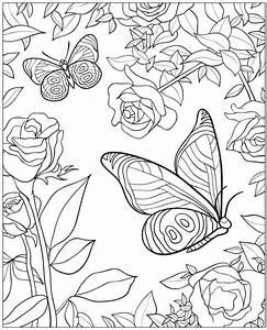 Die Besten 17 Ideen Zu Ausmalbilder Schmetterling Auf