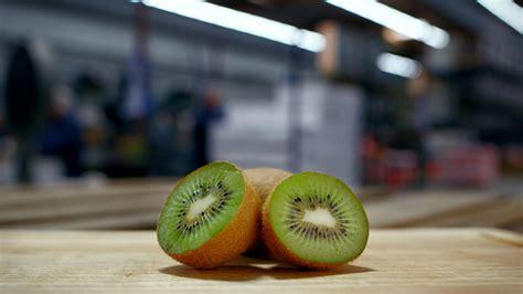 Fnf6 Fear No Fruit
