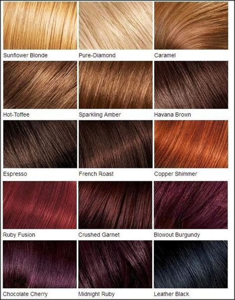Hair Color Shades Of Chart by Loreal Color Chart Different Brown Hair