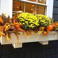 Window Boxes on Pinterest