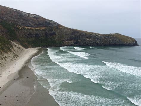 Dunedin And The Otago Peninsula New Zealand