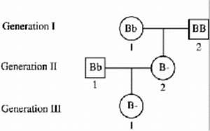 Image Gallery pedigree biology